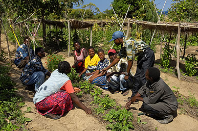A agriculture project